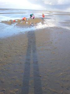 Strandbeschäftigung